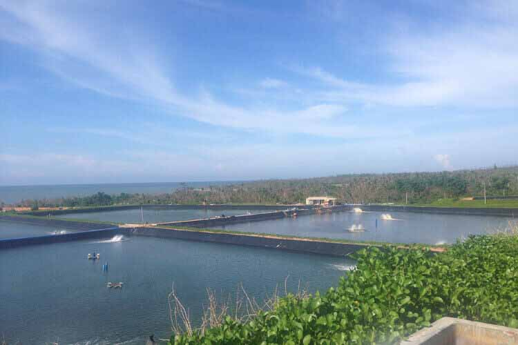 geomembrane-Aquaculture-projects