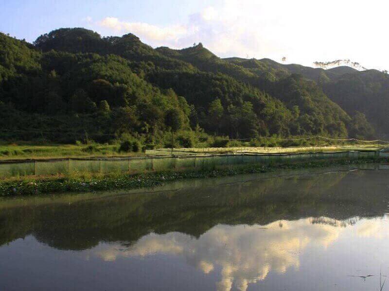 Lake Liner